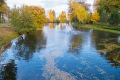 Los pasos que llevan abajo al banco del río con la flotación se van en la superficie del agua Fotografía de archivo libre de regalías