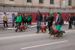 Los pastores alemanes marchan en el desfile del día del ` s de St Patrick Imágenes de archivo libres de regalías