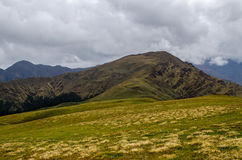 Los pastos alpinos verdes en Ali Bugyal Imagen de archivo libre de regalías