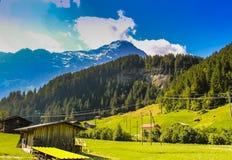 Los pastos verdes enormes en el valle de Grindelwald foto de archivo libre de regalías