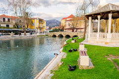 Los patos en una ciudad parquean en Solin, Croacia, gozando por el agua Imagenes de archivo