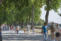 Los peatones caminan sobre las paredes fortificadas antiguas en Lucca, Tusc Imagenes de archivo