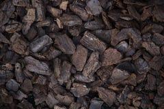 Los pedazos de Brown del ` s del pino raspan en la tierra Imagen de archivo