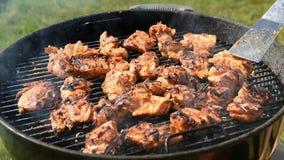 Los pedazos de pollo en la preparación en el carbón de leña asan a la parrilla afuera