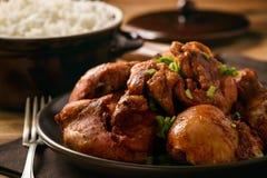 Los pedazos del pollo cocieron en salsa de tomate e hirvieron el arroz Fotografía de archivo libre de regalías