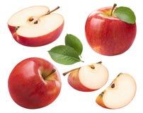 Los pedazos enteros de la manzana roja fijaron aislado en el fondo blanco Fotografía de archivo