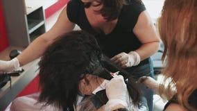 Los peluqueros teñen su pelo con los cepillos y lo pintan en el salón de belleza metrajes