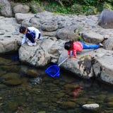 Los pequeños estudiantes recogen la basura del rive Imágenes de archivo libres de regalías