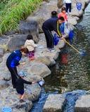 Los pequeños estudiantes recogen la basura del rive Foto de archivo