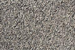 Los pequeños granos redondos blancos y negros que cubren una pared vertical emergen Fotografía de archivo libre de regalías