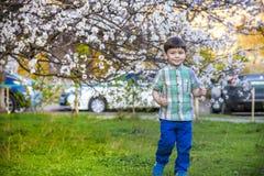 Los pequeños hermanos felices embroman en jardín de la primavera con los árboles florecientes, imagen de archivo