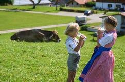 Los pequeños niños bávaros beben la leche en el prado con la vaca Imagen de archivo libre de regalías