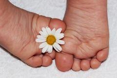 Los pequeños pies de los niños Imágenes de archivo libres de regalías