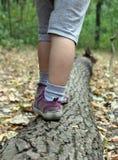Los pequeños pies están en el árbol Imágenes de archivo libres de regalías