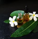 Los pequeños tarros de cristal con las flores del pachulí del Plumeria del aceite y del Frangipani para los tratamientos del baln Foto de archivo libre de regalías