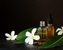 Los pequeños tarros de cristal con las flores del pachulí del Plumeria del aceite y del Frangipani para los tratamientos del baln Fotos de archivo