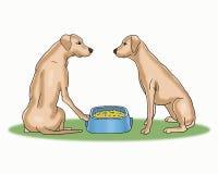 Los perros lindos comparten la historieta de la comida fotografía de archivo