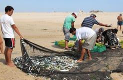 Los pescadores clasifican su retén de los pescados, Portugal foto de archivo libre de regalías