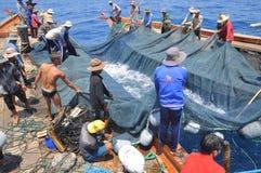 Los pescadores están pescando con red barredera para los pescados de atún en el mar de la bahía de Nha Trang en Vietnam Fotografía de archivo libre de regalías