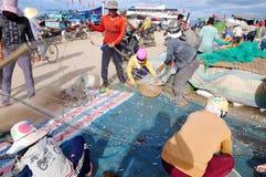 Los pescadores están quitando las anchoas pescan de sus redes para comenzar un nuevo día laborable en la isla del hijo de LY Fotografía de archivo