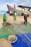 Los pescadores están quitando las anchoas pescan de sus redes para comenzar un nuevo día laborable en la isla del hijo de LY Imagen de archivo libre de regalías