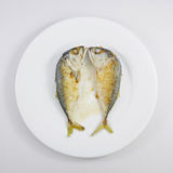 Los pescados cortos fritos de la caballa (2) fotos de archivo