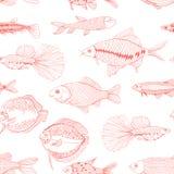 Los pescados dan el ejemplo exhausto ilustración del vector