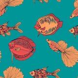 Los pescados dan el ejemplo exhausto libre illustration