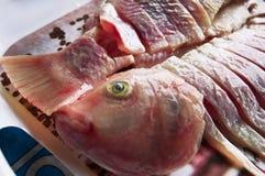 Los pescados de agua dulce cortaron en pedazos fotografía de archivo libre de regalías