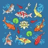 Los pescados de Koi vector la carpa japonesa del ejemplo y el koi oriental colorido en el sistema de Asia del pez de colores chin Fotos de archivo