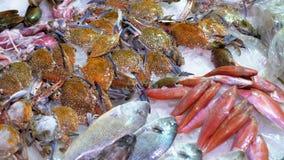 Los pescados de mar frescos, cangrejos, los diversos mariscos se venden en el contador de la tienda en la calle almacen de video