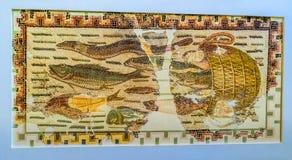 Los pescados del mosaico Imagen de archivo libre de regalías