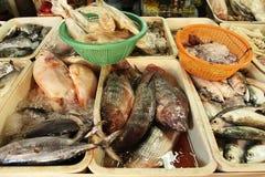 Los pescados en el mercado de pescados fotos de archivo