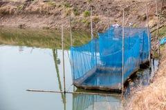 Los pescados enjaulan la flotaci?n en el uso del r?o para criar pescados, construido con los barriles pl?sticos azules, los tubos imagen de archivo libre de regalías