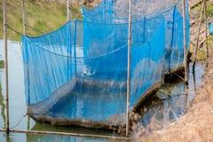 Los pescados enjaulan la flotaci?n en el uso del r?o para criar pescados, construido con los barriles pl?sticos azules, los tubos fotos de archivo libres de regalías