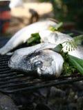 Los pescados frescos se prepararon para cocinar en la parrilla Imagen de archivo libre de regalías
