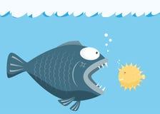 Los pescados grandes comen pequeños pescados Miedo del pequeño concepto de los pescados Foto de archivo libre de regalías