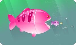 Los pescados grandes comen pequeños pescados   Serie de los conceptos Fotografía de archivo libre de regalías