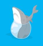 Los pescados grandes en la pequeña charca o el tiburón se pegaron en pequeño fishbowl Imágenes de archivo libres de regalías
