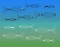 Los pescados pescan por todas partes Fotografía de archivo libre de regalías