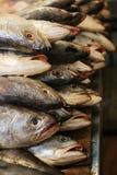 Los pescados reci?n pescados llenaron para arriba en pilas en el mercado, listo para ser vendido fotos de archivo