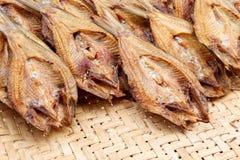 Los pescados se secan imagenes de archivo