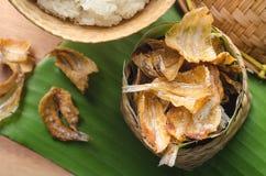 Los pescados secados al sol curruscantes fritos sobre plátano verde hojean Imagen de archivo libre de regalías