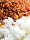 Los pescados y los chiles asados mezclaron y cocinaron el arroz Imagen de archivo libre de regalías