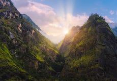Los picos de montañas cubrieron la hierba verde y árboles en la puesta del sol Imagen de archivo libre de regalías