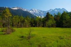 Los picos del Hotakas del humedal de TASHIRO Fotografía de archivo libre de regalías