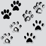 Los pies animales de la pista de la pata del gato imprimen iconos con la sombra. Fotos de archivo