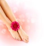 Los pies de la mujer. Concepto de la pedicura Fotos de archivo libres de regalías