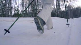 los pies de pie empapan caminar caminar Cámara lenta Paisaje del invierno de la nieve Actividad de la reconstrucción Turismo de l almacen de video