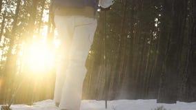 los pies de pie empapan caminar caminar Cámara lenta Paisaje del invierno de la nieve Actividad de la reconstrucción Turismo de l almacen de metraje de vídeo